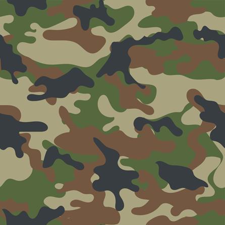 Camo militar